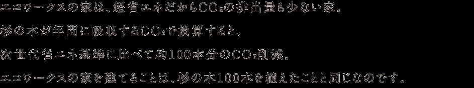 エコワークスの家は、超省エネだからCO2排出量も少ない家。杉の木が年間に吸収するCO2で換算すると、次世代省エネ基準に比べて約100本分のCO2削減。エコワークスの家を建てることは、杉の木100本を上田ことと同じなのです。